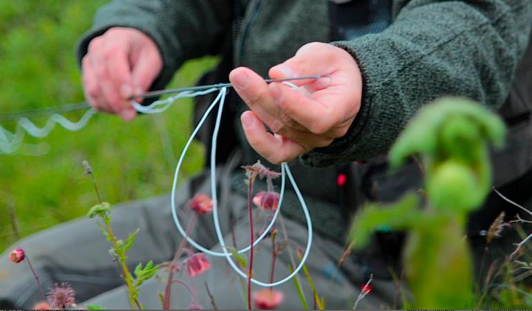 Zum Grundwissen zum Thema Fliegenschnur gehören die Schulklassen und Schnurtypen - und auch das richtige Durchfädeln der Schnur durch die Ringe der Fliegenrute.