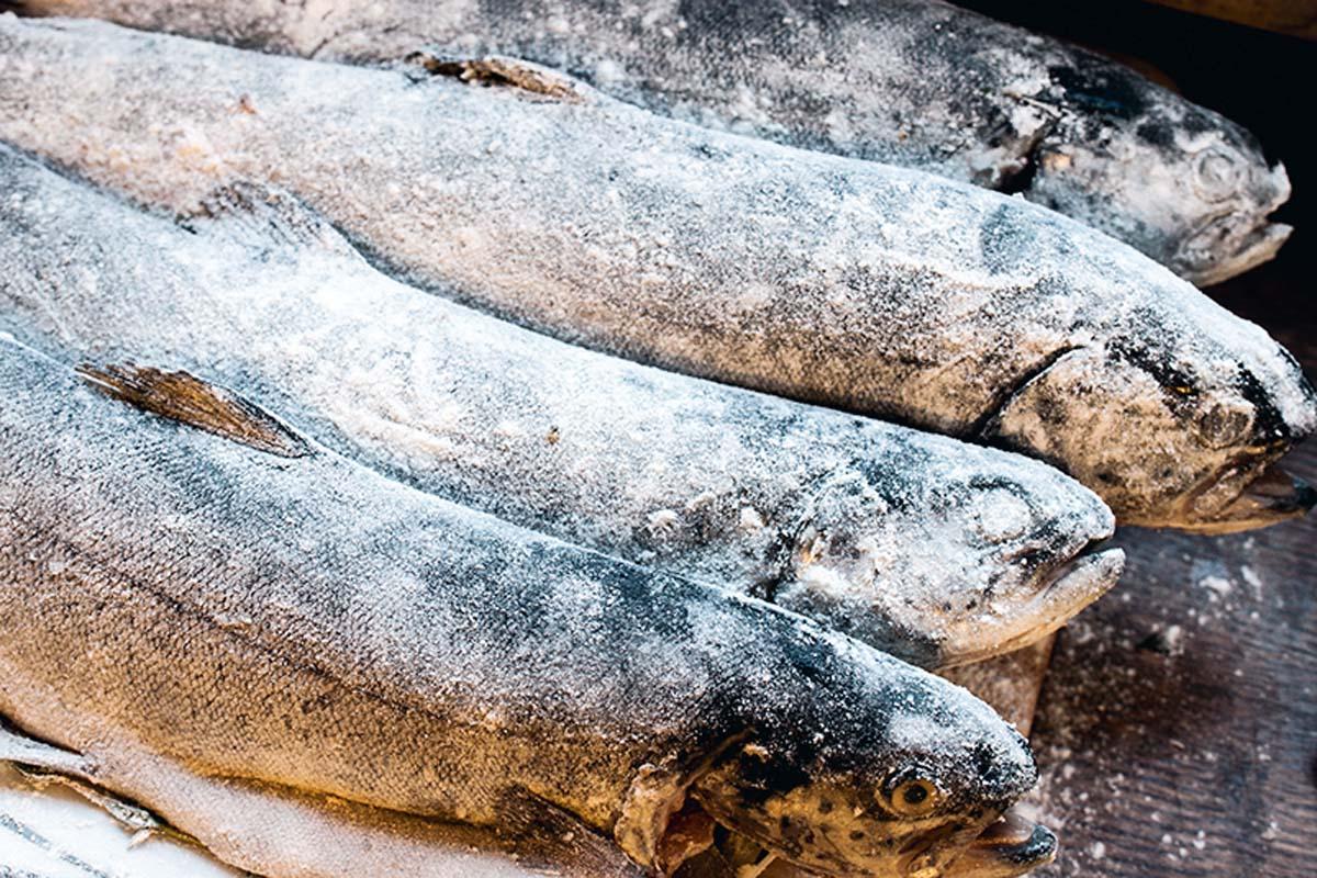 Die Fische nur einmal kurz in Mehl wenden, abklopfen und in Butter oder Öl (je nach Geschmack) braten. Foto: Artur Jagiello