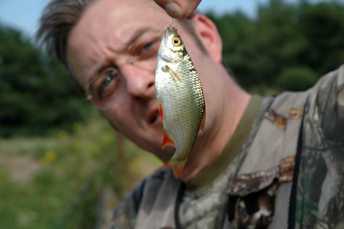 Schnell und einfach Köderfische fangen. Hier zeigen wir dir, wie es gelingt. Foto: BLINKER.de/Schwarzer