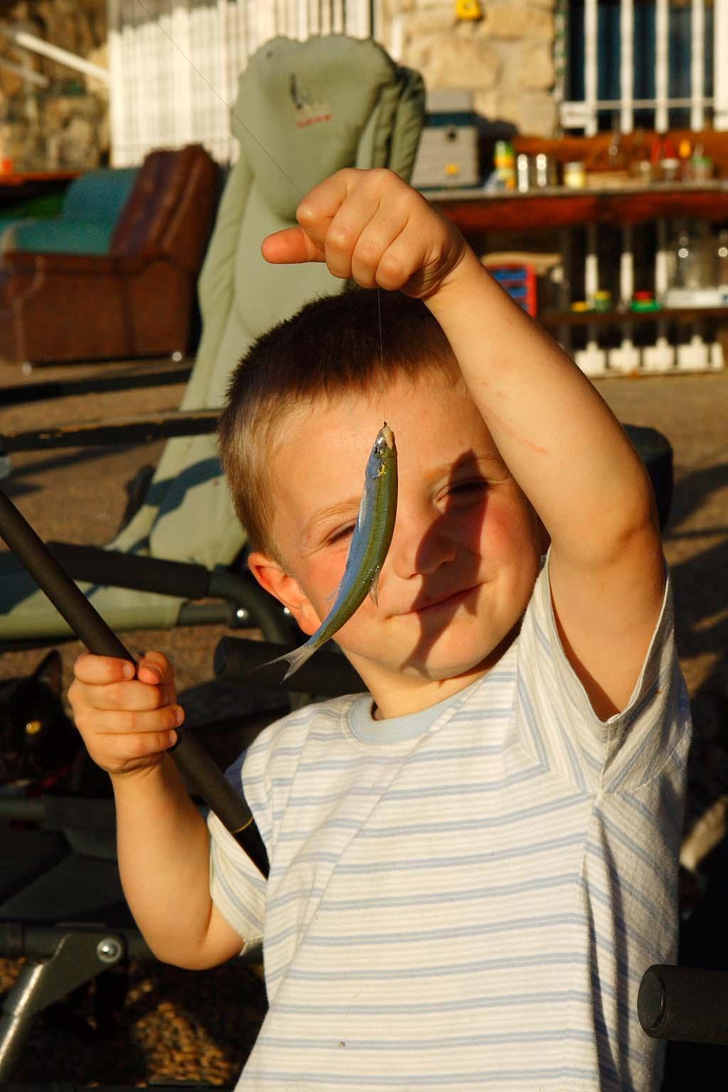 Köderfisch fangen ist kinderleicht und macht dazu noch Spaß. Foto: BLINKER/Portrat