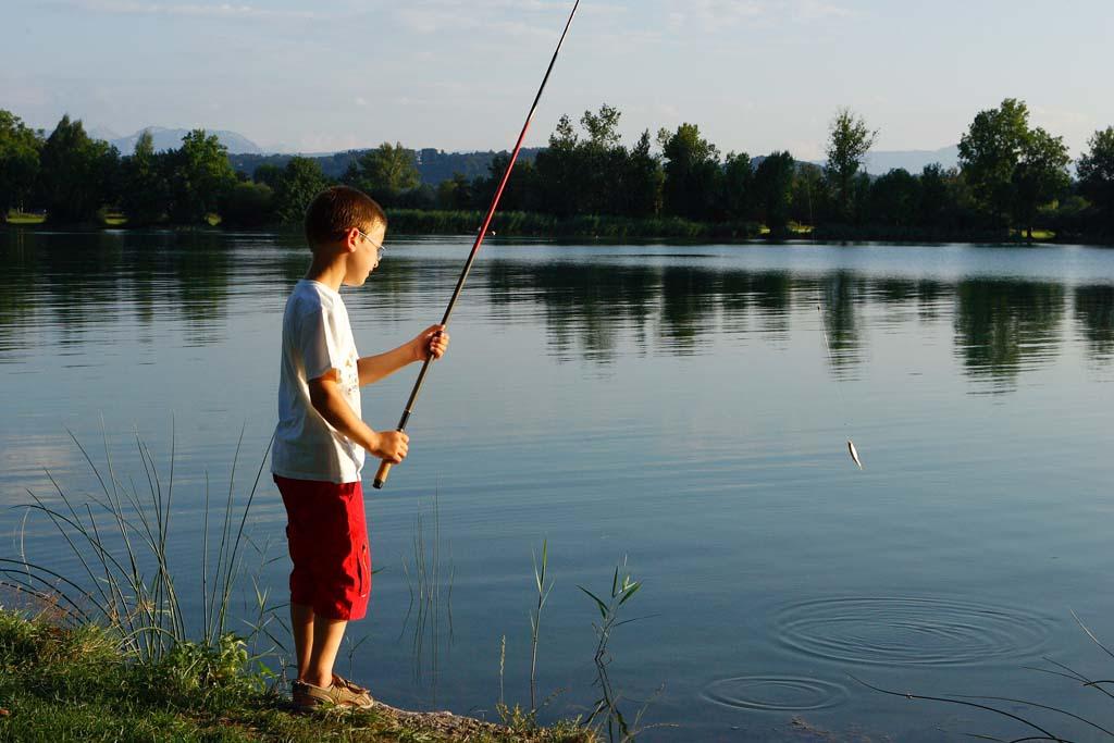 Mit der Stipprute lassen sich schnell ein paar Köderfisch fangen. Foto: BLINKER/Portrat