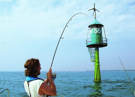 Erneut wird der Pilker mit der Rute vom Grund abgehoben. In der nächsten Absinkphase kommt der Biss - Anhieb! Der Fisch hängt. www.der-angler.de