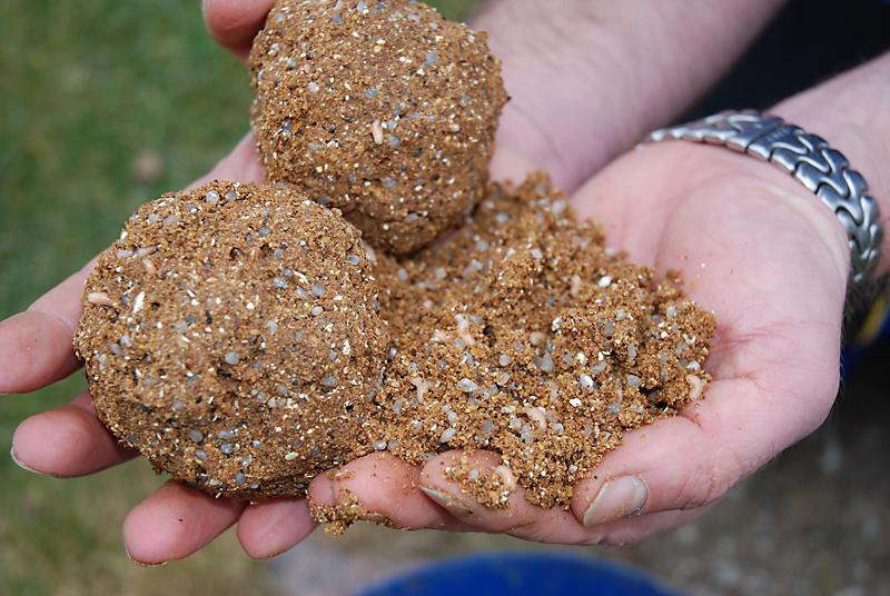 1-20 kg Allround Futtermittel Mais Futtermischung Grundfutter Karpfen Schleie