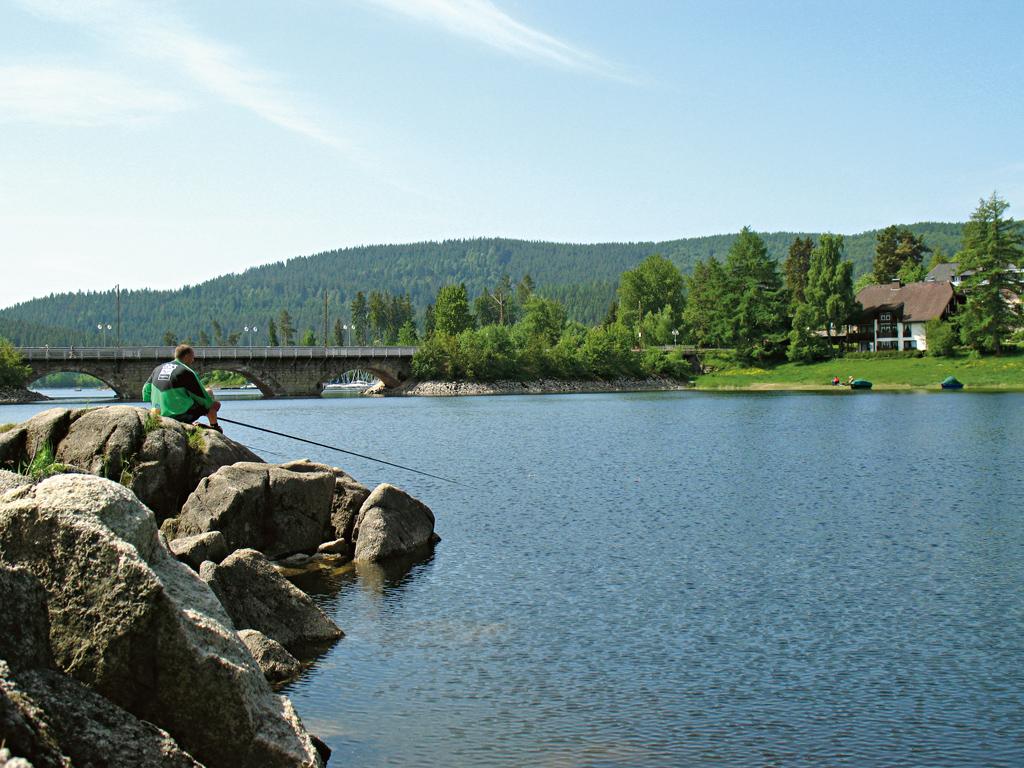 """Der """"Kleine See"""", eine Bucht des Schluchsees, hier am Einlauf des Fischbachs."""