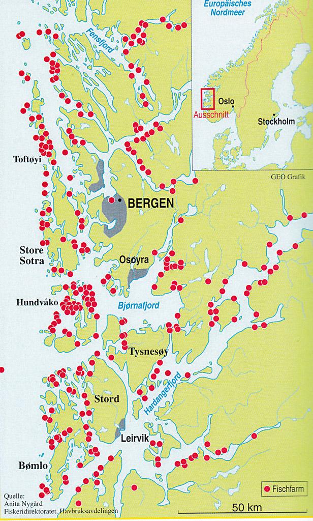 280 Lachsfarmen rund um Bergen, 2.000 Lachsfarmen in Norwegen – und jede produziert bis zu 1.000.000 Farmlachse pro Jahr!