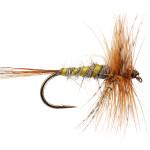 Fliegen Einsteiger Fliegenfischen Marchbrown Märzbraune