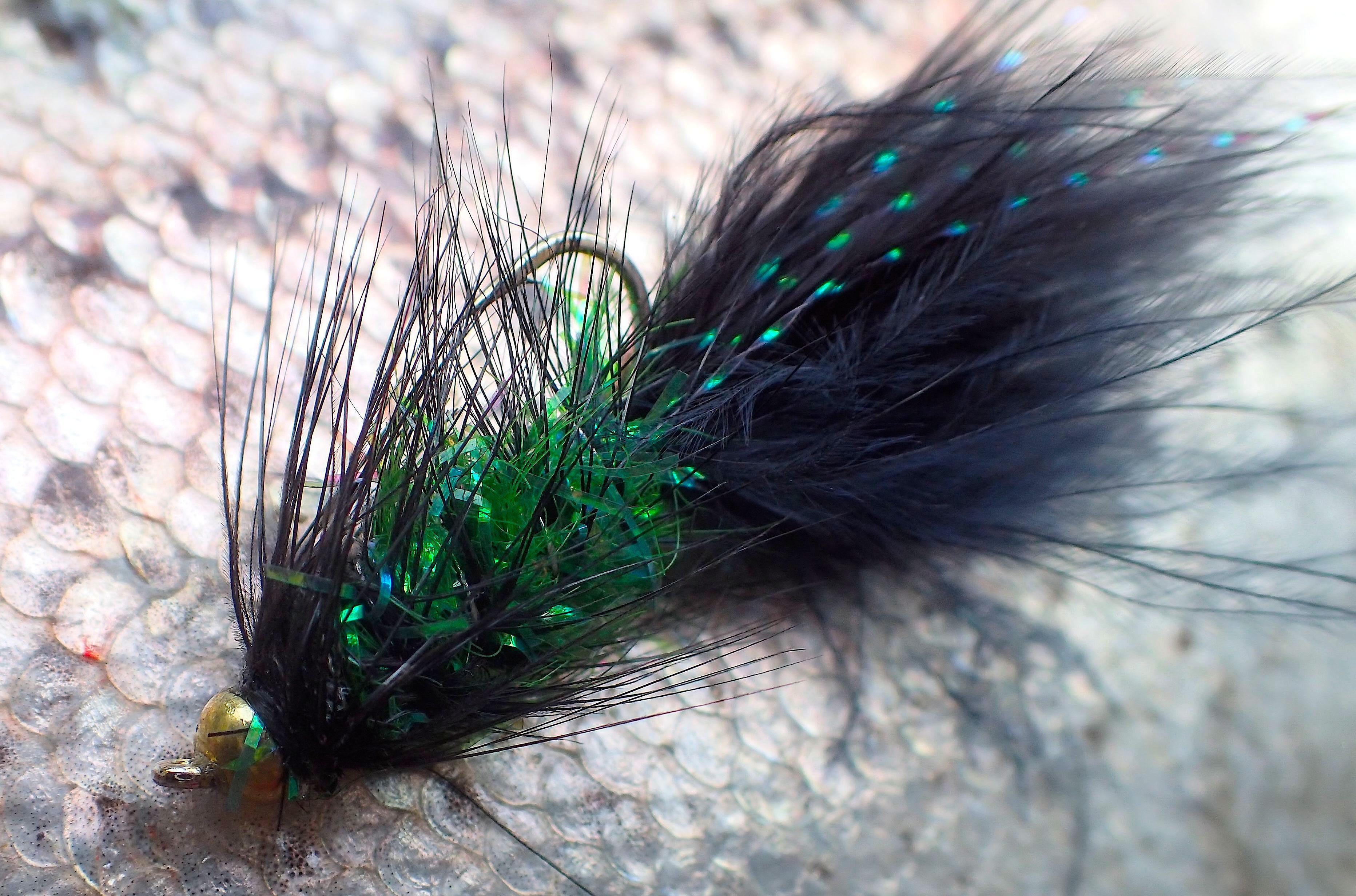 Fliegen Einsteiger Fliegenfischen Wolly Bugger