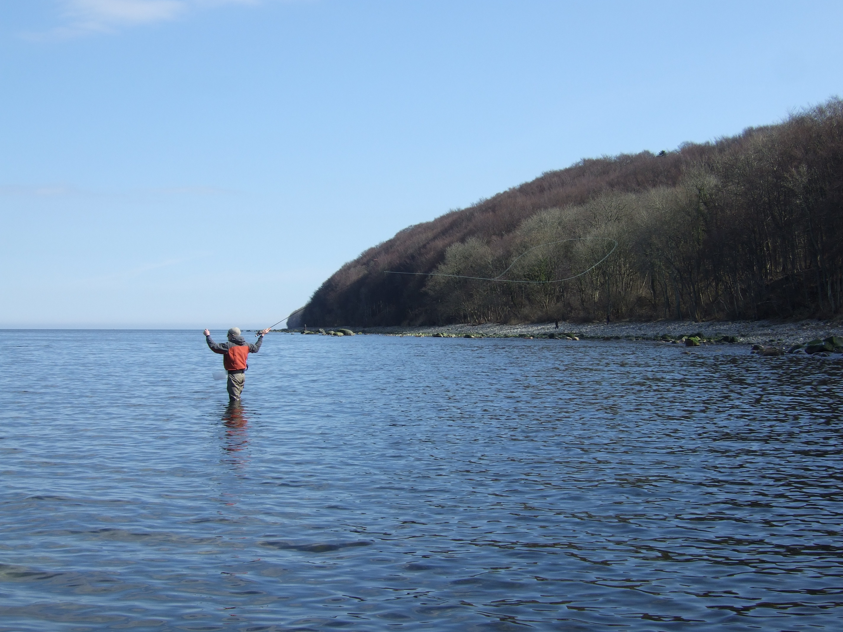 Küsten-Strategien der Meerforellen im Frühjahr - BLINKER