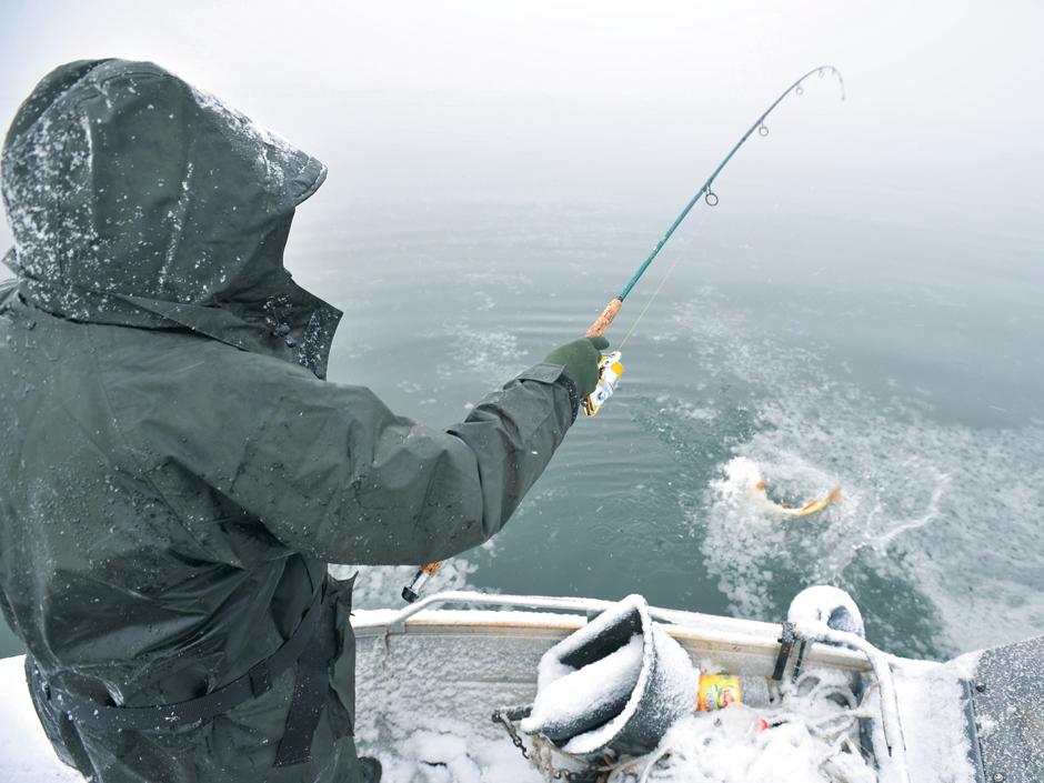Ein Winterhecht gibt ordentlich Gas. Im Kalten suchen die Räuber die tiefen Stellen in einem Gewässer.