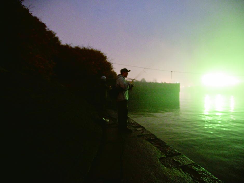 Auch das Rapfenangeln während der Nacht kann sich an den heißen Plätzen wie am Tage lohnen. Foto: BLINKER