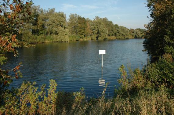 Ein Altarm mit Verbindung zum Fluss ist an allen Stellen hechtverdächtig. Foto: BLINKER