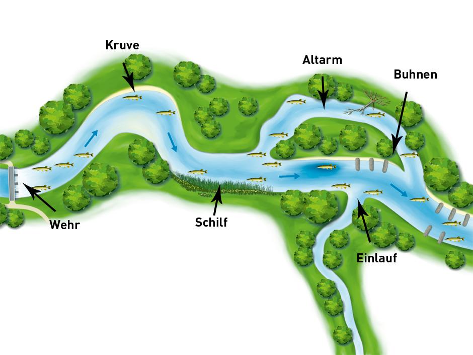 Hier sehen ihr die Hecht-Hotspots im Überblick. Grafik: BLINKER