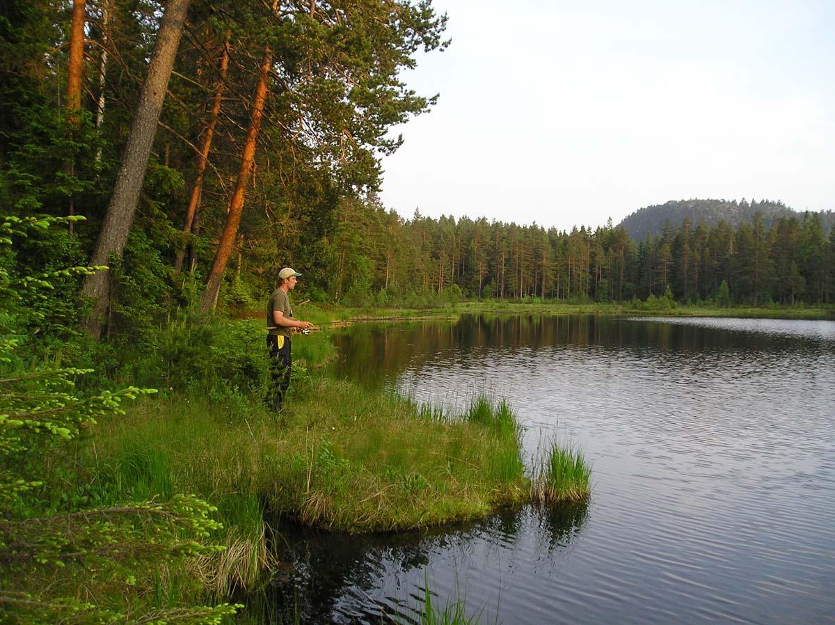 Norwegen hat noch weit mehr zu bieten als Meeresangeln. Überall im Land verteilt bieten sich reichlich Gelegenheiten zum Angeln in glasklaren Flüssen und Seen. Foto: BLINKER/M. Wendt
