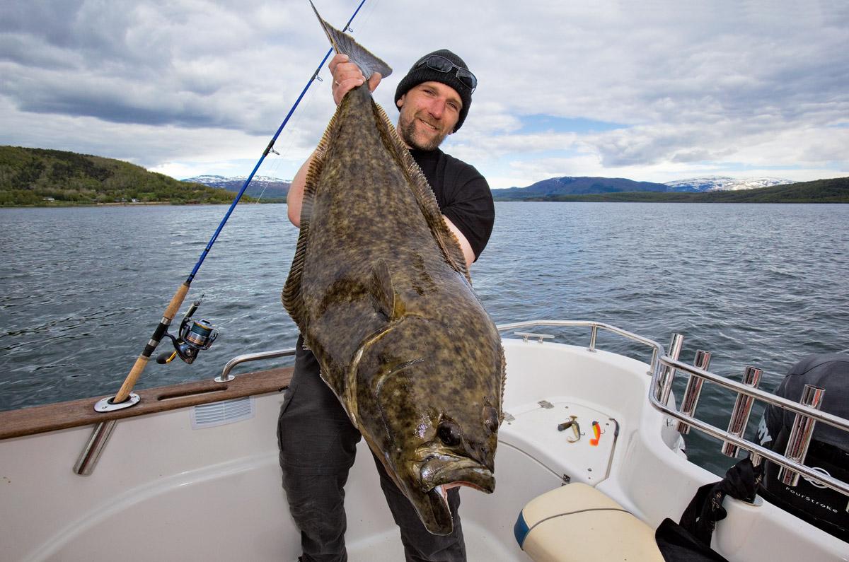 Objekt der Begierde: Heilbutt ist der Zielfisch Nummer eins im Norden. Foto: BLINKER/M. Wendt