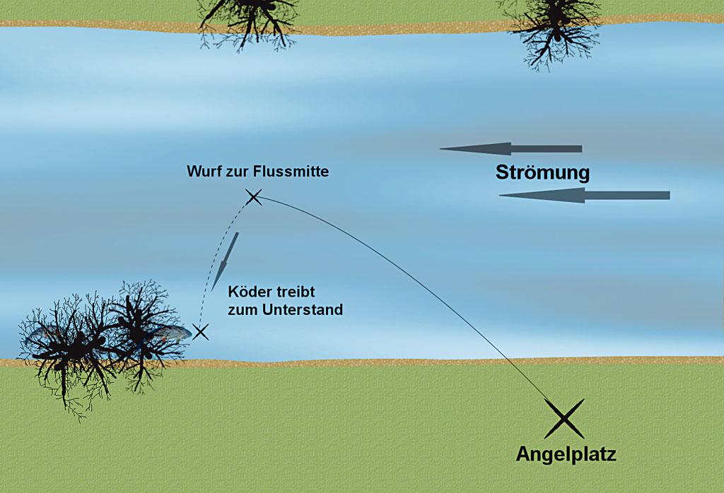 Damit noch weniger Misstrauen bei den Döbeln geschürt wird, kann man seinen Köder in die Flussmitte werfen und ihn anschließend bis unter den verheißungsvollen Spot treiben lassen. Grafik: BLINKER