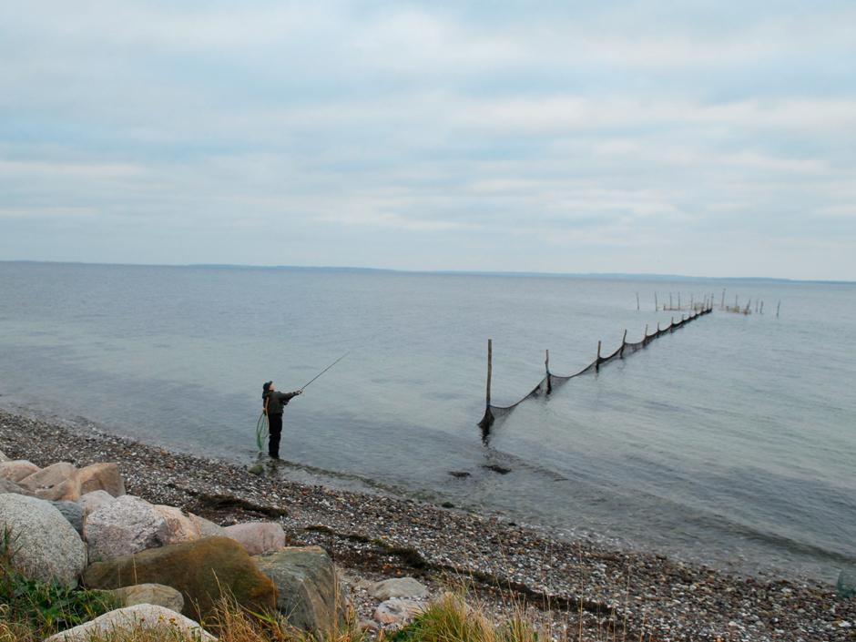 Nicht immer gleich zum Horizont waten. Oft rauben die Forellen dicht unter Land in der ersten Rinne. Foto: BLINKER