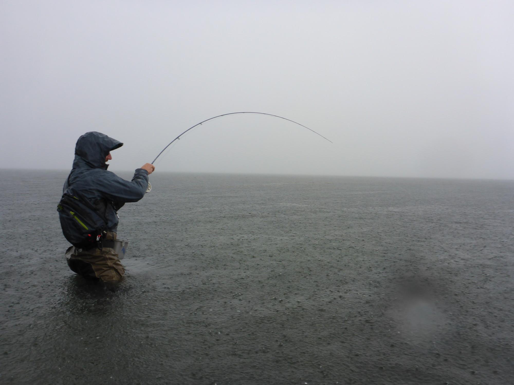Ob Sturm, Dauerregen oder gar Schnee – Die Forellen sind bei allen Bedingungen auf Jagd. Daran sollten auch wir uns halten. Hier hat im strömenden regen eine fette Forelle den Streamer genommen. Foto: BLINKER