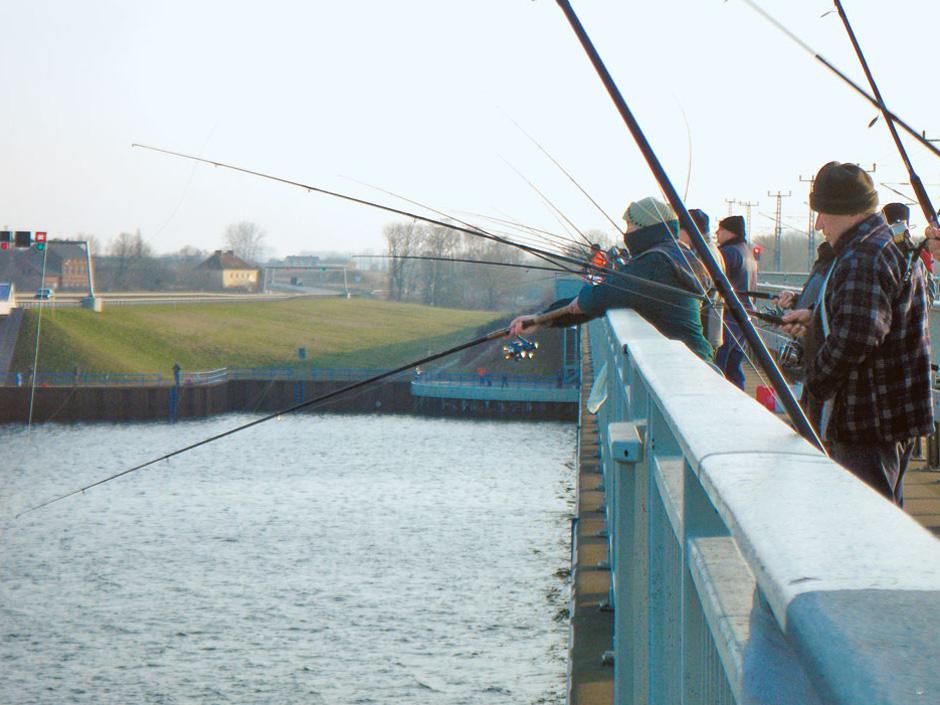 Treffen der Heringsangler auf dem Rügendamm. Alle machen dasselbe, aber einige fangen immer besser. Foto: BLINKER