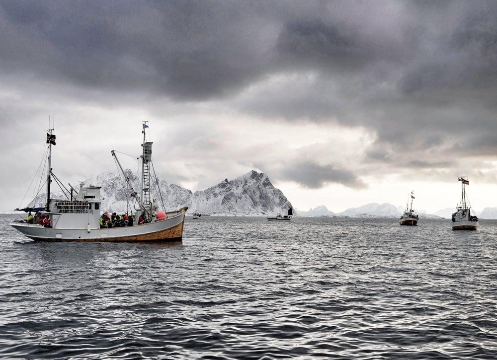 Die Inselgruppe der Lofoten liegt nördlich des Polarkreises und besteht aus 80 Inseln. Sie werden von den nördlichen Ausläufern des Golfstroms gestreift, die beim Angeln vor den Lofoten für einen großen Fischreichtum sorgen.