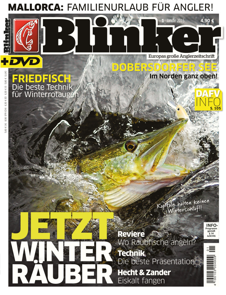 Blinker Ausgabe 01/2015