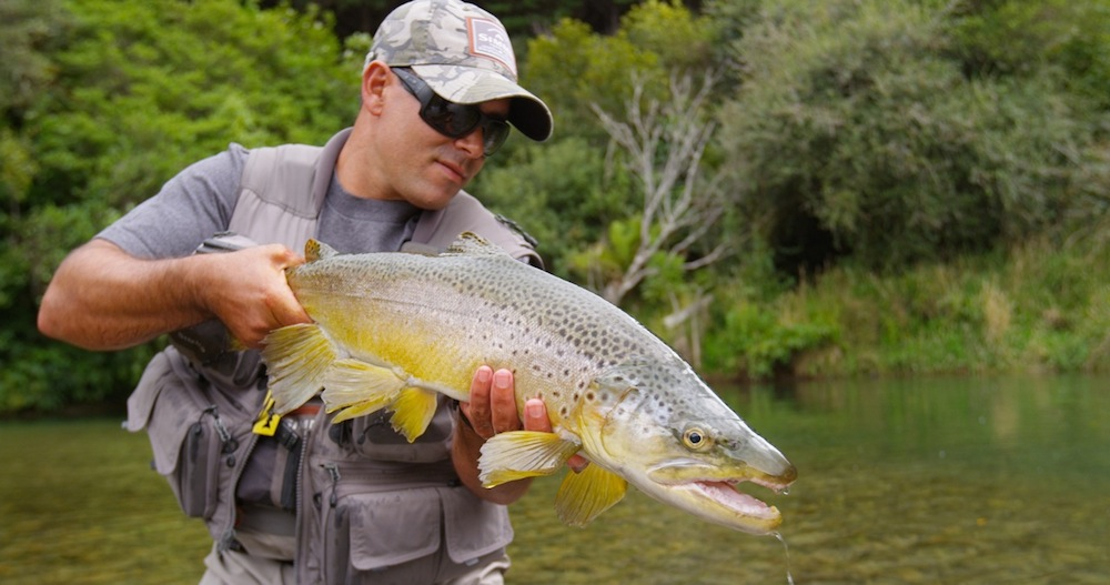 Rise fly fishing film festival 2015 blinker for International fly fishing film festival