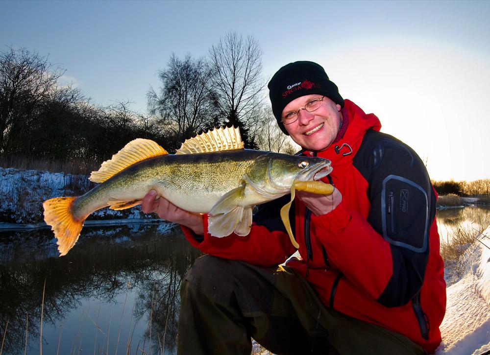 Auch dicke Zander ziehen sich gerne im Winter in die flachen Gewässerbereiche im Fluss zurück. Foto: W. Krause