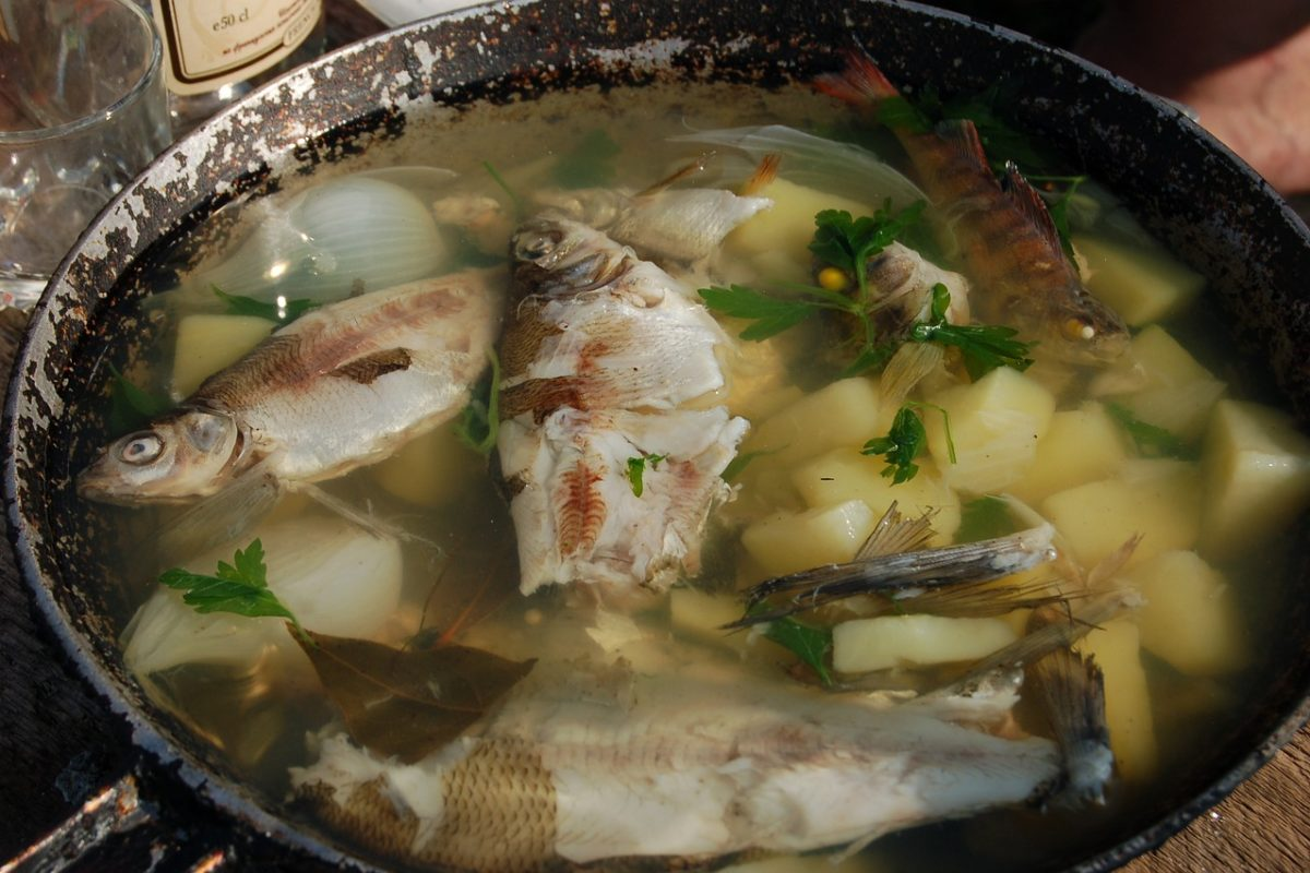 Die Fischsuppe aus der Steinzeit wurde schon vor tausenden Jahren gekocht. Und noch heute kommt sie in vielen Haushalten auf den Tisch!