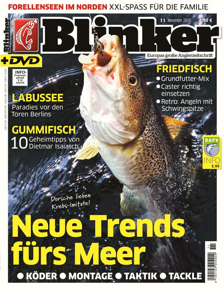 Blinker Ausgabe 11/2015