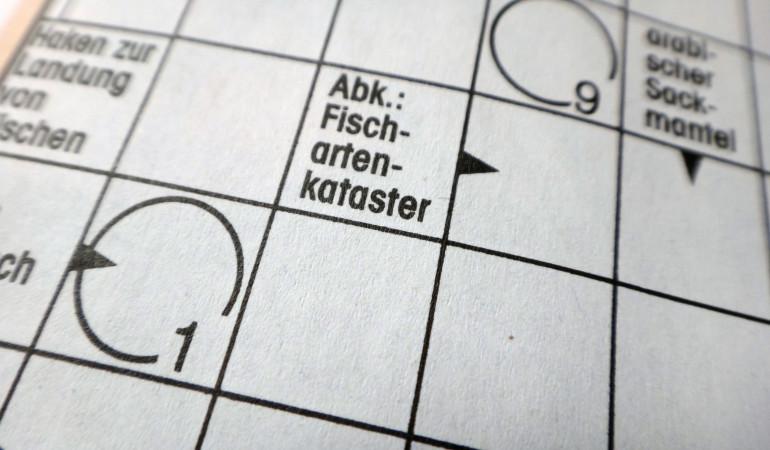 Angelwoche Blinker