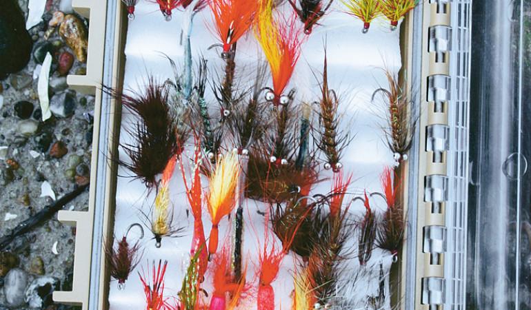 Am kommenden Samstag dreht sich in der Sportangler-Zentrale Nürnberg alles ums Fliegenfischen. © M. Werner