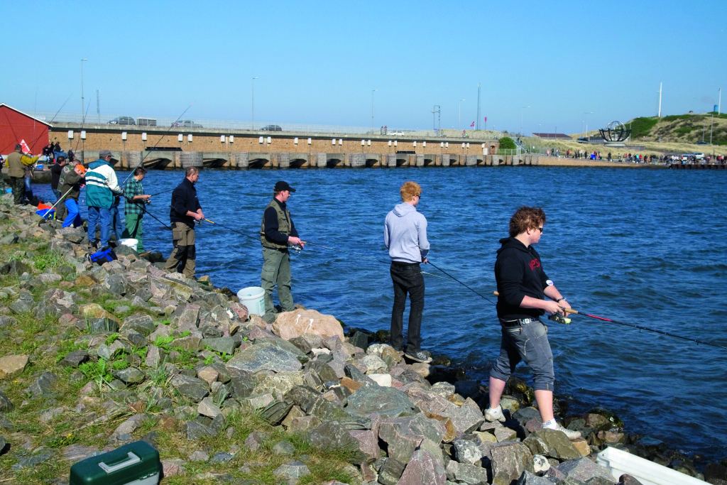 Heringsangler vor der bekannten Schleuse von Hvide Sande - einem der Herings-Hotspots Dänemarks.