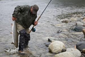Die Gaula ist bekannt für ihre großen Lachse! Hier landet Michael Werner gerade einen 8-Kilo-Lachs im Bridge Pool-