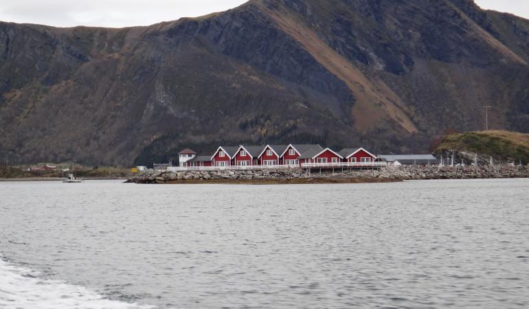Vor riesigen Felsformationen liegen die gemütlichen und modernen Ferienhäuser. Von dort aus kann man nicht nur vom Ufer angeln und einen atemberaubenden Blick auf die lofoton genießen, sondern auch Polarlichter bestaunen.