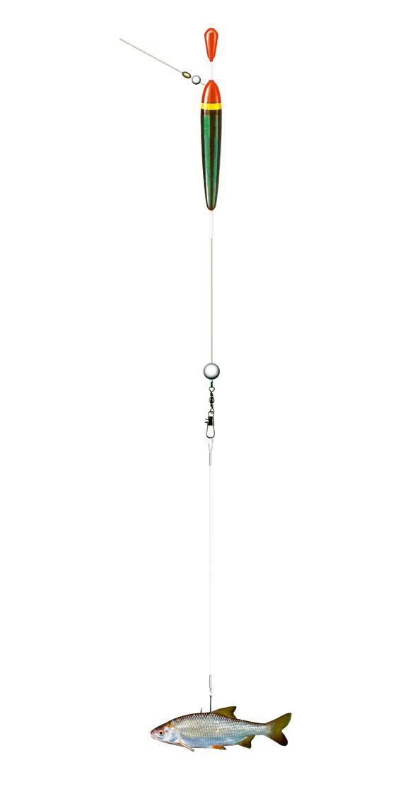 Der Klassiker beim Angeln mit Köderfisch ist die Posenmontage (hier eine Laufpose). Der Köderfisch wird so befestigt, dass er waagerecht unter der Pose schwebt. Grafik: BLINKER