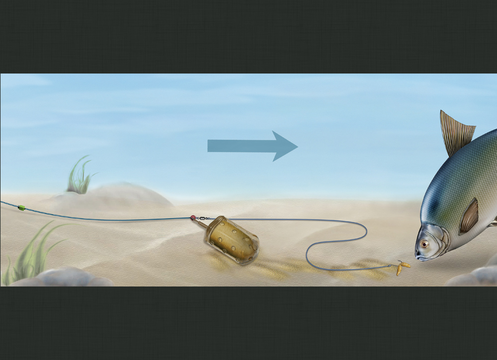 Die Strömung im Fluss hat den Futtermix aus dem Korb gespült und eine verlockende Spur zum Köder gelegt. Grafik: Blinker