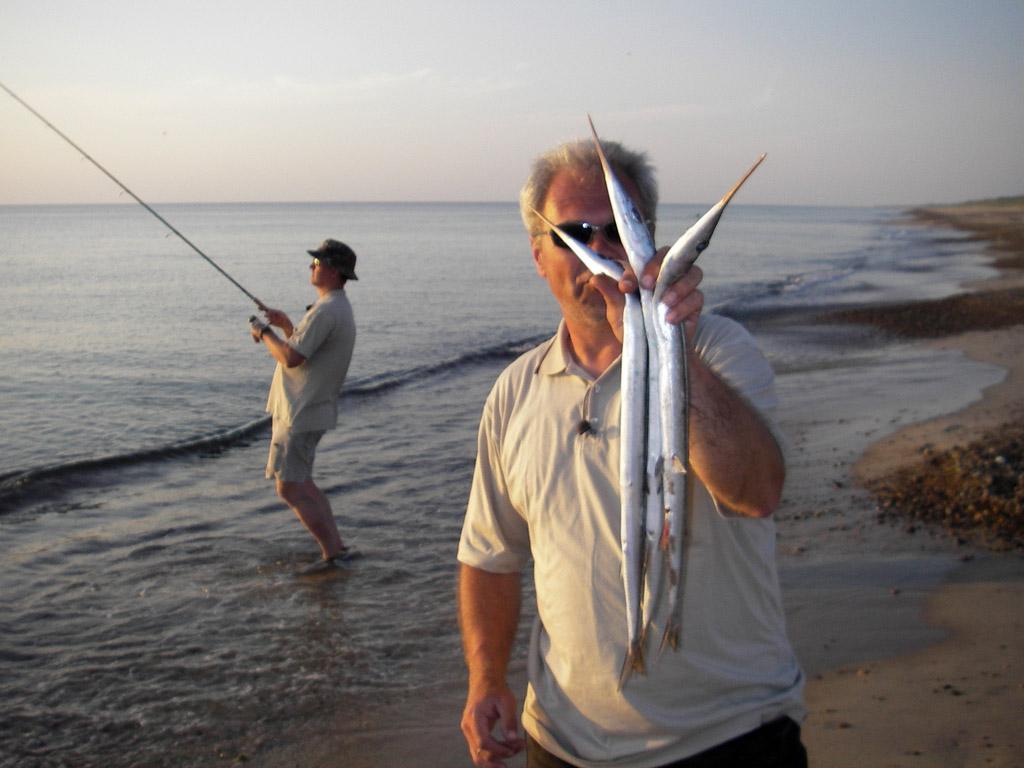 Bei ruhigem Wetter kann man häufig die Raubfischattacken der Hornhecht beobachten. Dann macht das Angeln vom Ufer besonders Spaß. Foto: BLINKER