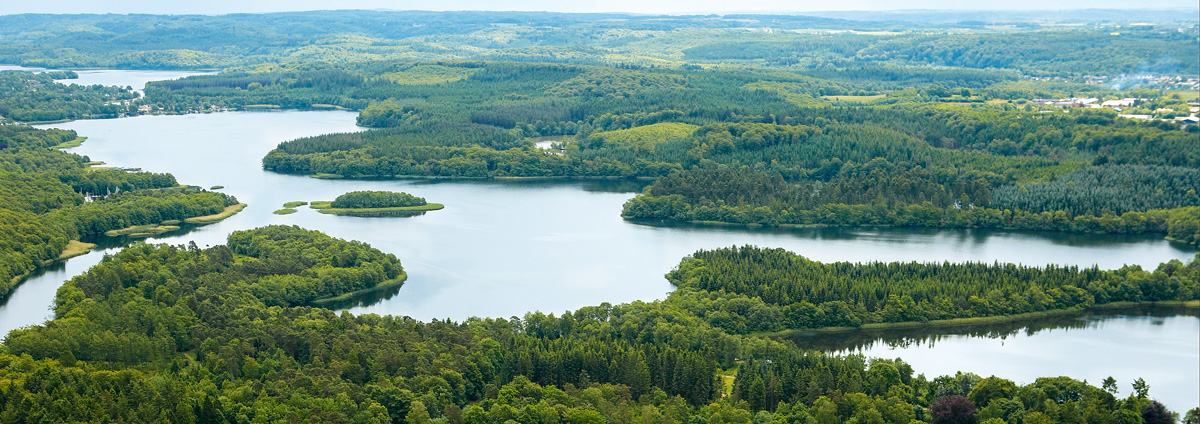 Die Silkeborger Seen sind ein Anglerparadies. Foto: Visit Silkeborg