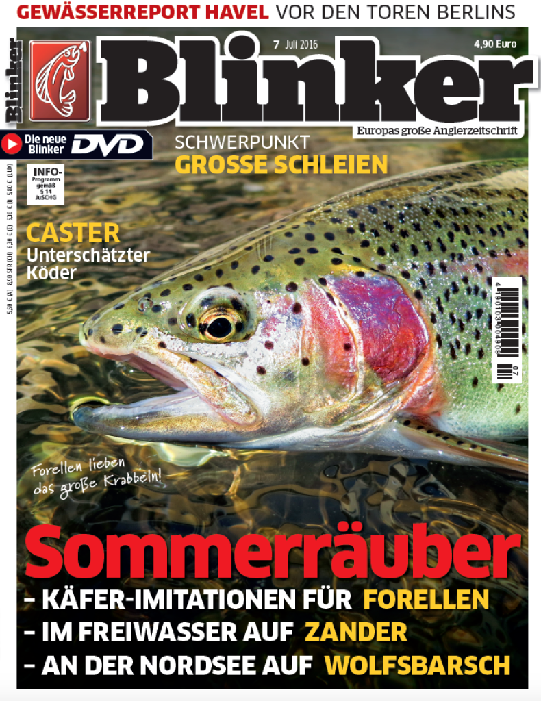 Blinker_titel_08_16