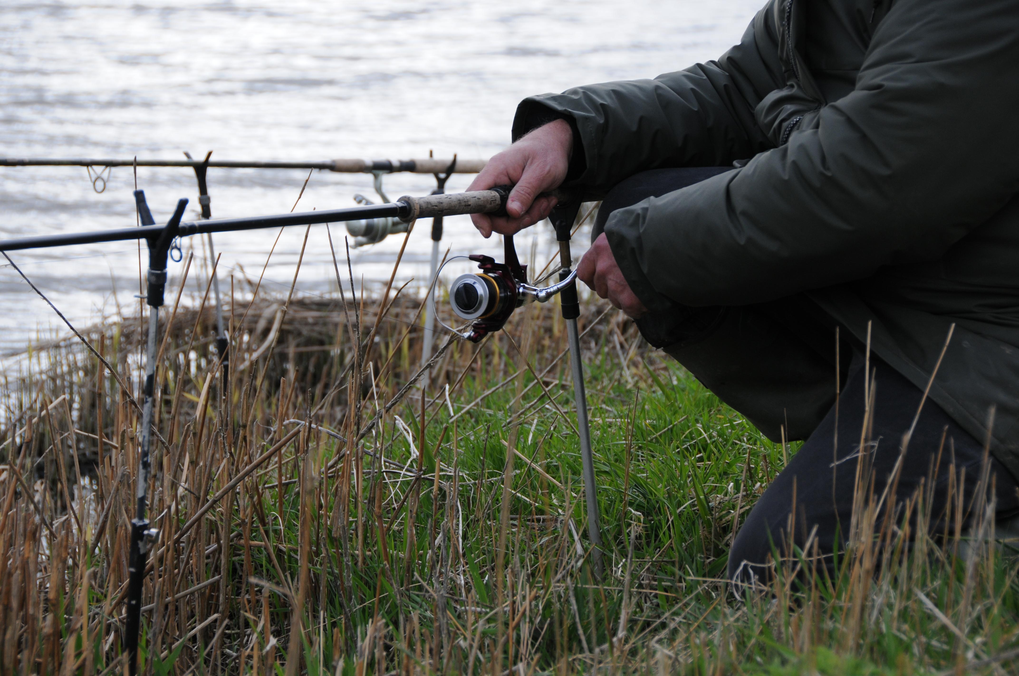 Mit dem richtigen Aal-Equipment klappt es auch auf die großen Aale. Foto: S.