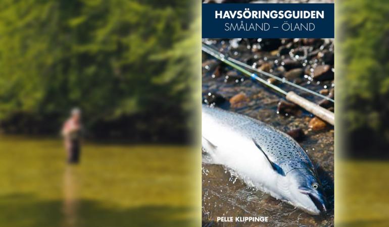 Fliegenfischen_Buchvorstellung_Havsoeringsguide