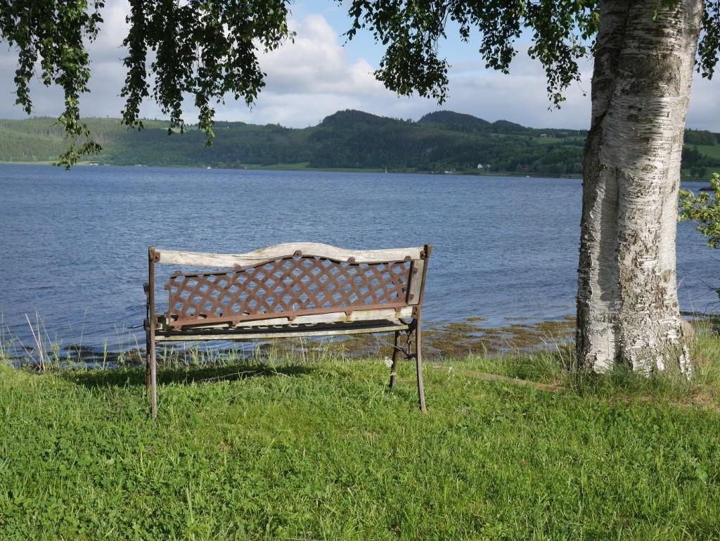 Hier gibt es viele und zum Teil auch recht idyllische Angelplätze. Foto: J. Stollenwerk
