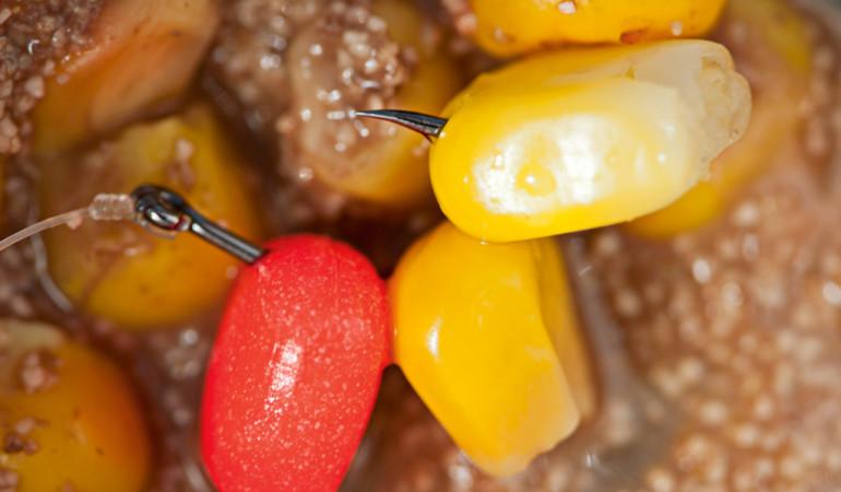 Mais, ein echter Allroundköder mit großem Fangpotenzial. Foto: BLINKER/K. Braune