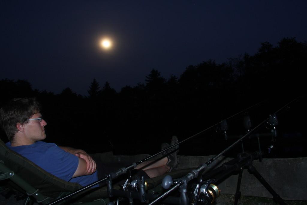 Karpfenangeln Sommer Nachtangeln