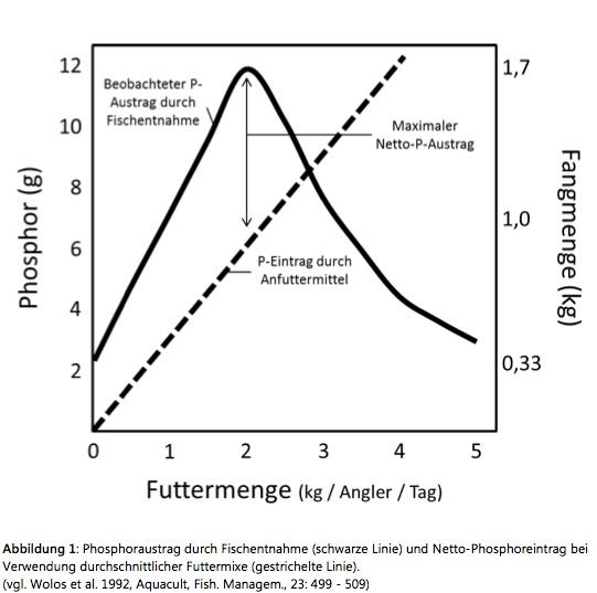 Phosphorausträge durch Fischentnahme (schwarze Linie) und Netto-Phosphoreinträge bei Verwendung durchschnittlicher Futtermixe (gestrichelte Linie). Beim Einsatz von rund 2 kg Futtermittel werden dem Gewässer durchschnittlich die meisten Nährstoffe entzogen, da die Fänge durch das Füttern überproportional ansteigen.