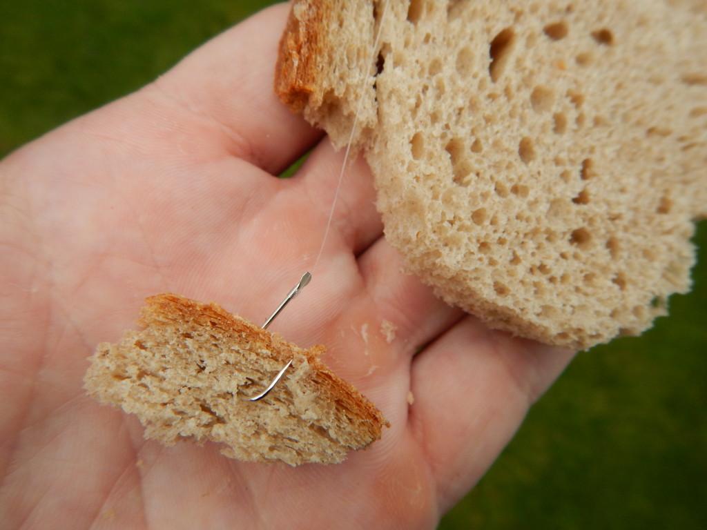 Karpfenangeln Sommer Brot