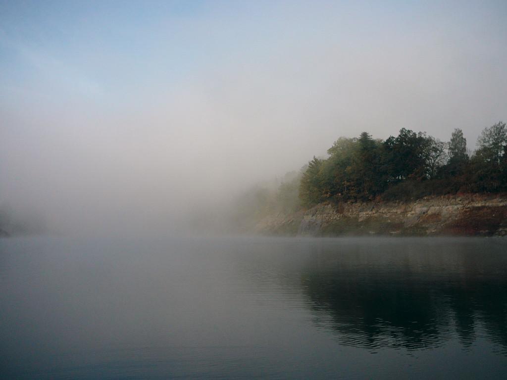 Karpfenangeln im Herbst Nebel