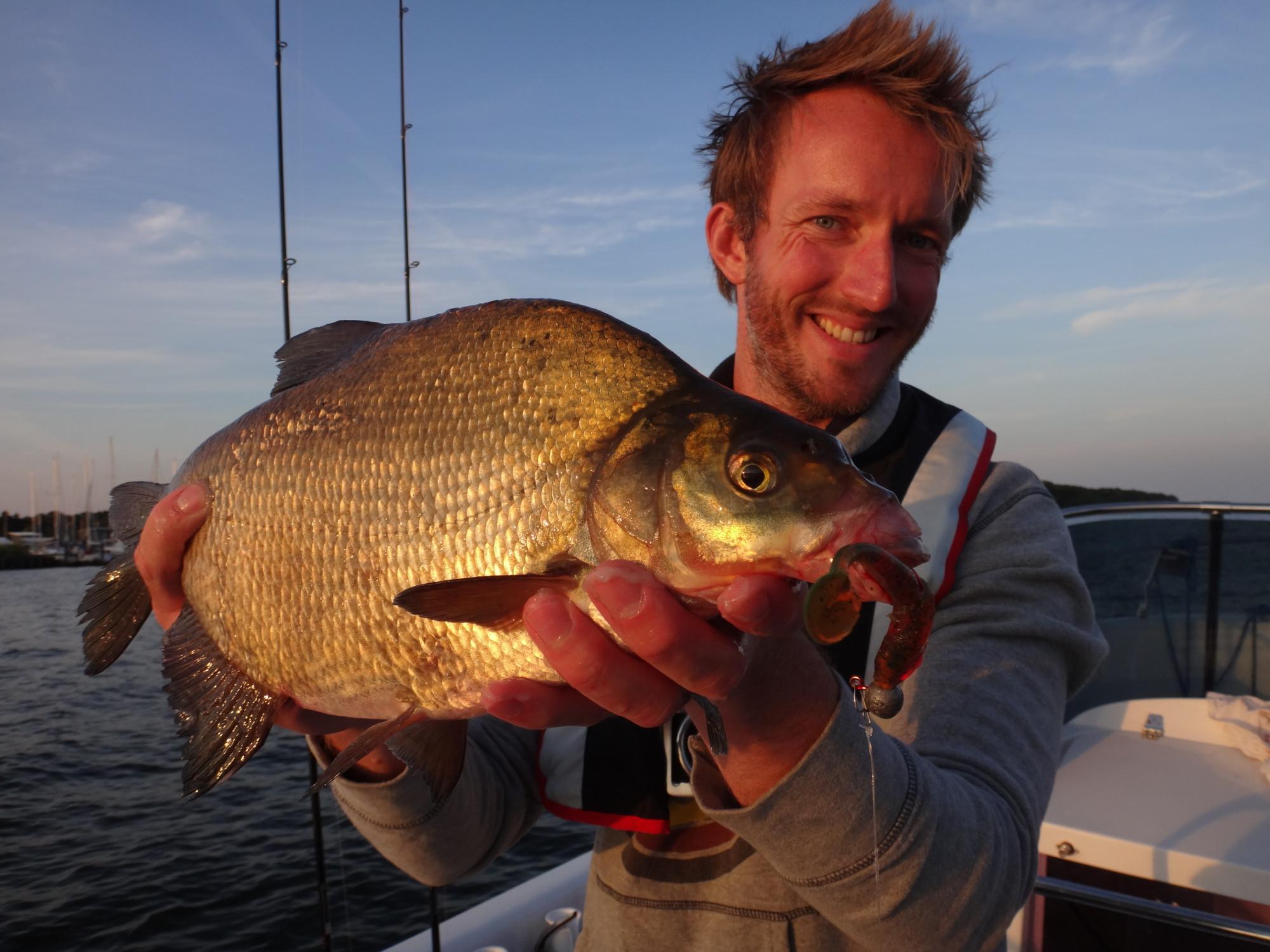 Das kommt vor allem während der Laichzeit vor: ein guter Fisch, der beim Brassen angeln auf Gummifisch biss.