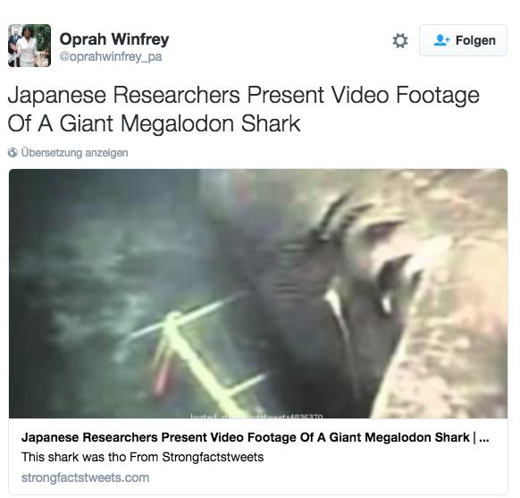 Gerüchten nach, soll der Megadolon immer noch in der Tiefsee sein Unwesen treiben. Immer wieder tauchen fragwürdige Videos und Fotos auf.