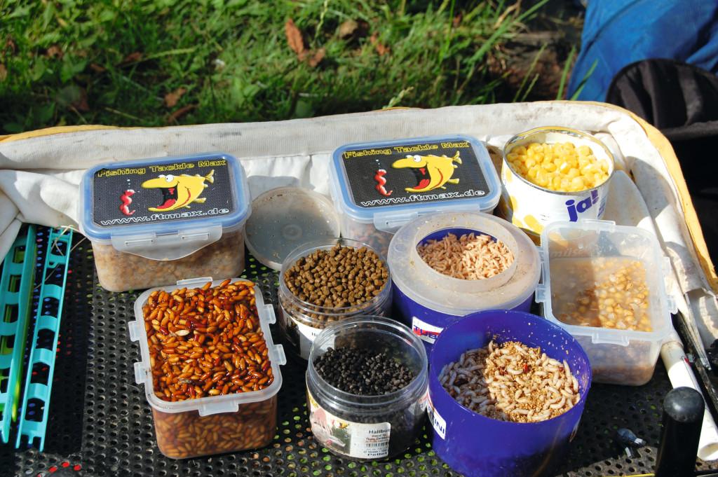 Gute Köder fürs Brassenangeln: Caster, Mais, Maden, Würmer, Pellets