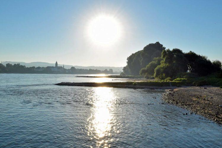 Traumhafte Aussichten: Das Angler am Rhein bietet für uns Angler eine enorme Fischvielfalt.